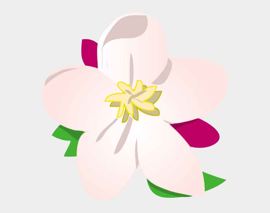 apple blossom clipart, Cartoons - State Flower In Michigan