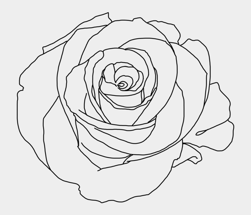 flower clipart tumblr, Cartoons - Drawing Cutting Tumblr - Aesthetic Rose Draw