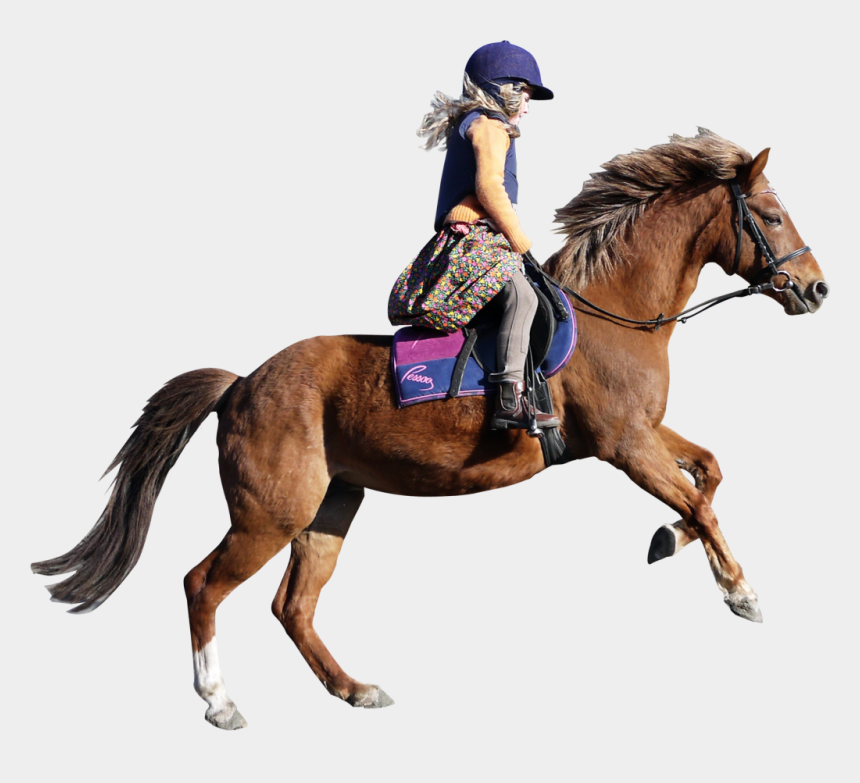 girl riding horse clipart, Cartoons - Horse Png Image - Girl On Horse Png