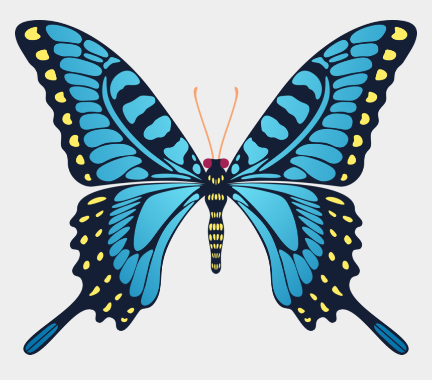 yellow butterfly clipart, Cartoons - Blue Yellow Butterfly By Cencerberon - Flying Butterfly Animation Gif