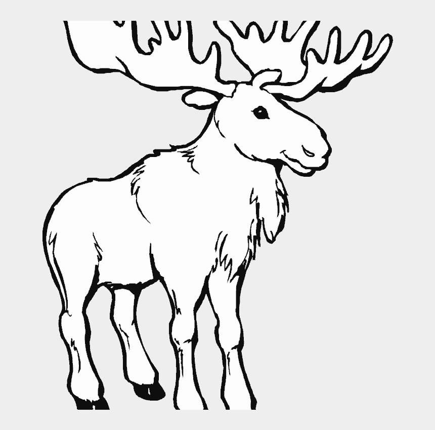 Coloring moose Easy coloring animals for kids moose stock vector ... | 849x860
