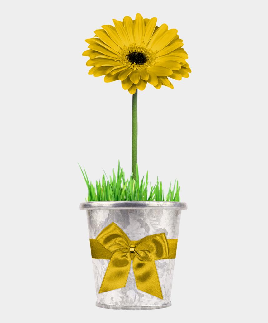 clipart plants and flowers, Cartoons - Ch B *✿* Friendship Flowers, Trees To Plant, Flower - Laço Para Vaso De Flor