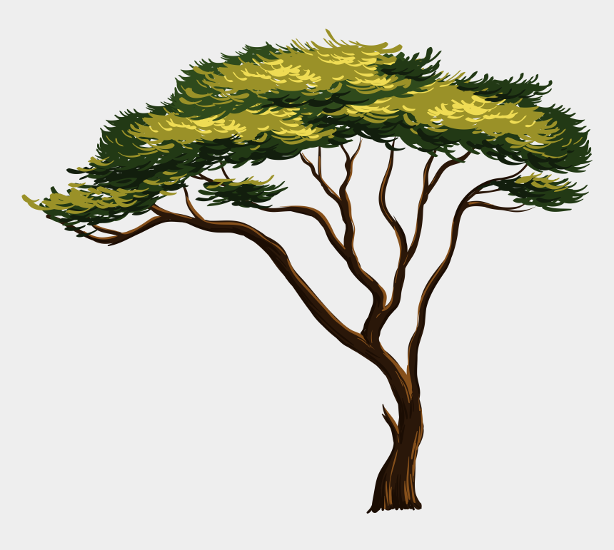 african tree clipart, Cartoons - Clipart Of Africa, African And Tree - Beautiful Easy Drawing Nature