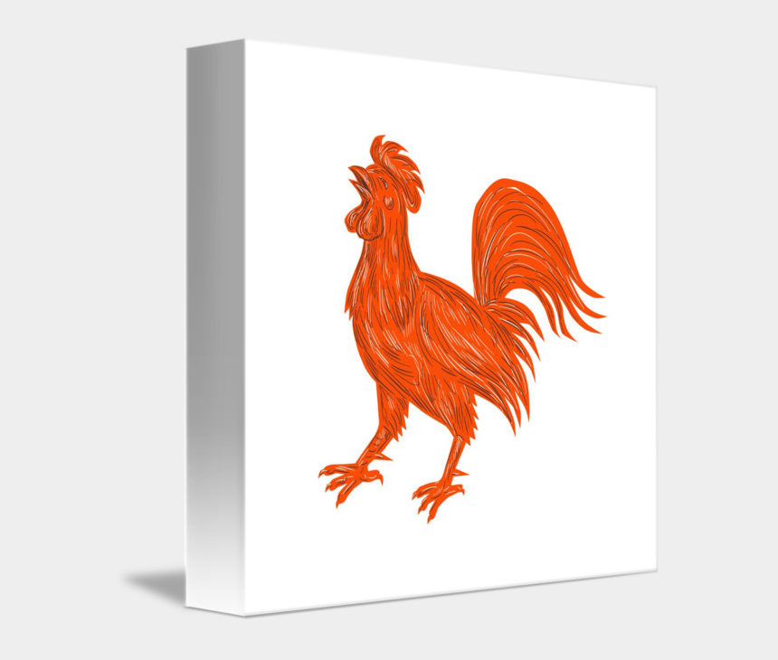 chicken face clipart, Cartoons - Drawn Chicken Rooster - Rooster