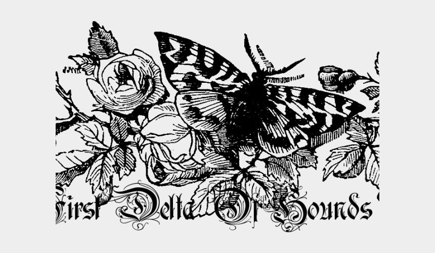retro flower clipart, Cartoons - White Flower Clipart Retro Flower - Transparent Vintage Floral Border Black And White