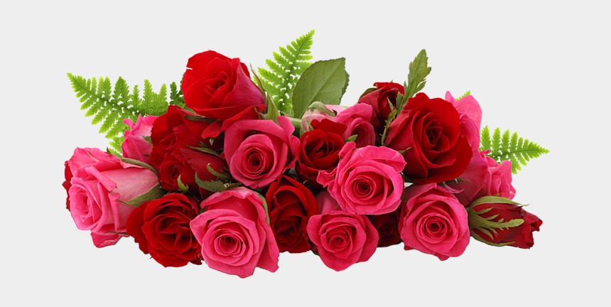 bouquet of roses clipart, Cartoons - Roses Bouquet Png - Red And Pink Roses Hd
