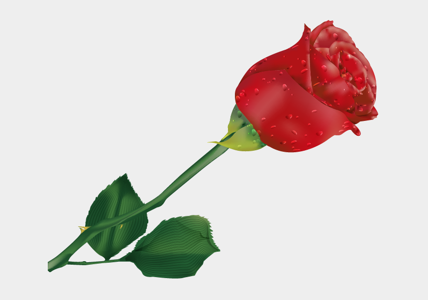 single rose clipart, Cartoons - Beautiful Single Rose Flower