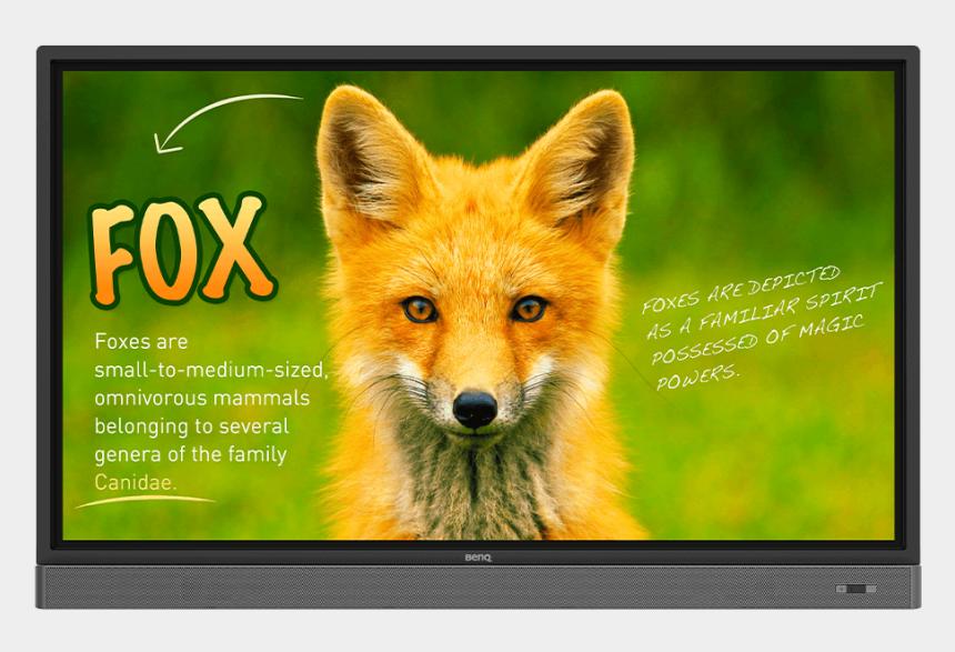 flat screen tv clipart, Cartoons - Rp653k 65″ Education Interactive Flat Panel - Benq Rp653k