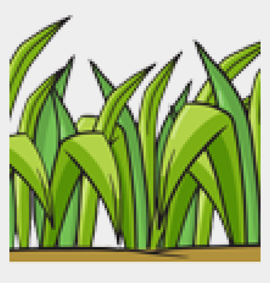 corn maze clipart, Cartoons - Grass - Illustration