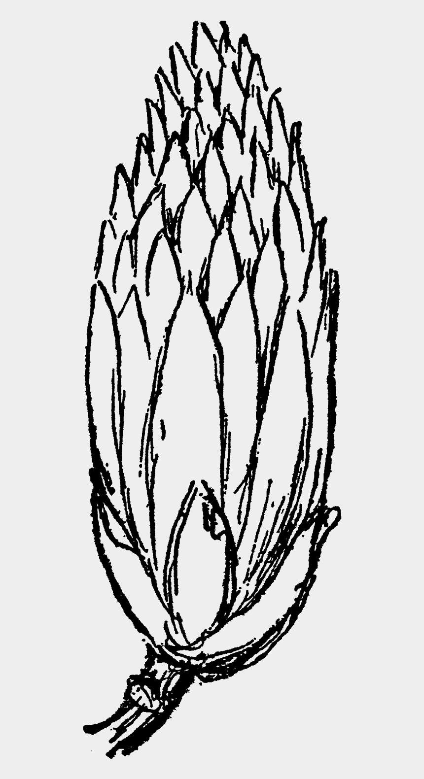 flower drawing clipart, Cartoons - Flower Floral Wildflower Tulip Tree Blossom Digital - Sketch