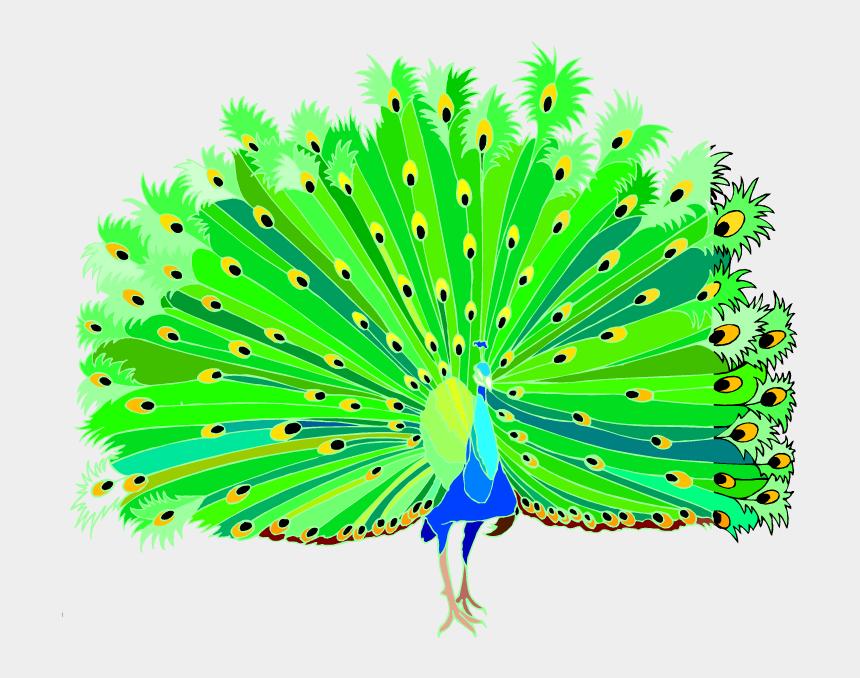 Vintage Peacocks Peacock Clipart Bird Clipart Peacock Clip | Etsy