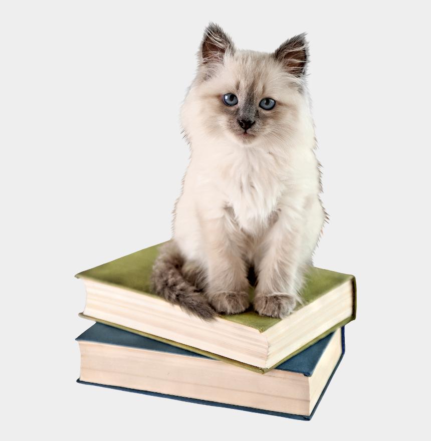 cats clipart, Cartoons - Cat