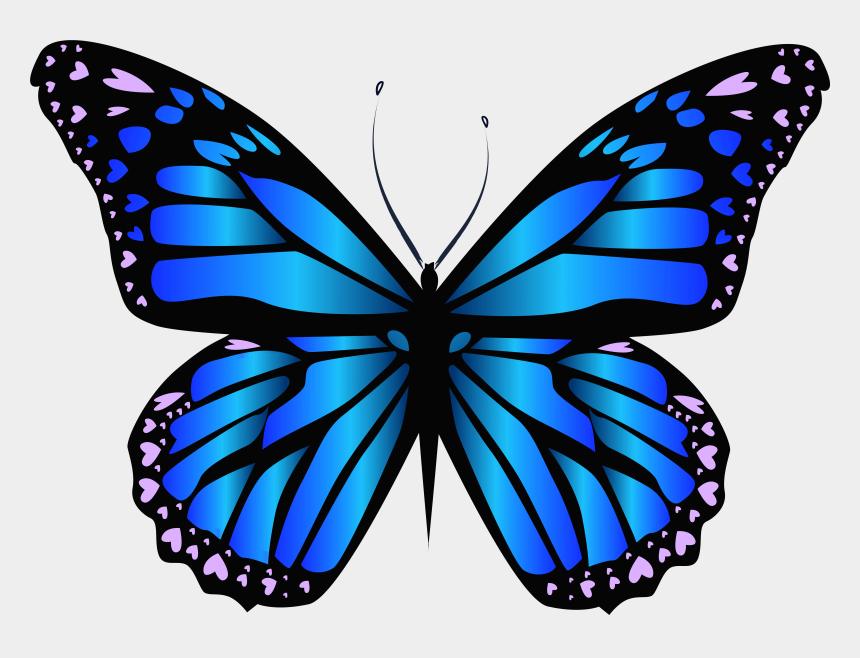 butterflies clipart, Cartoons - Monarch Butterfly Clipart Transparent - Butterfly Drawing