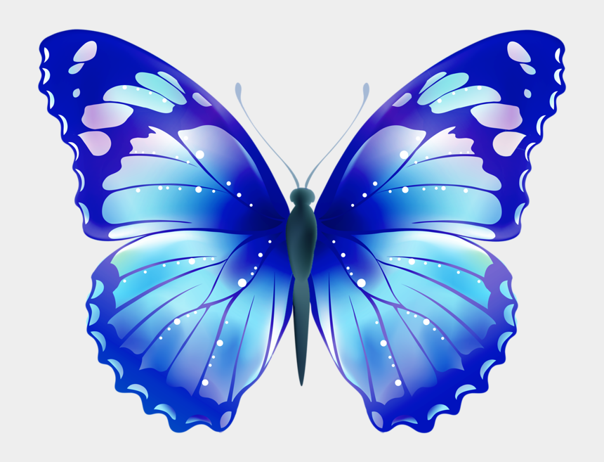 butterflies clipart, Cartoons - Deus Ex Clipart Butterfly - Butterfly Drawing