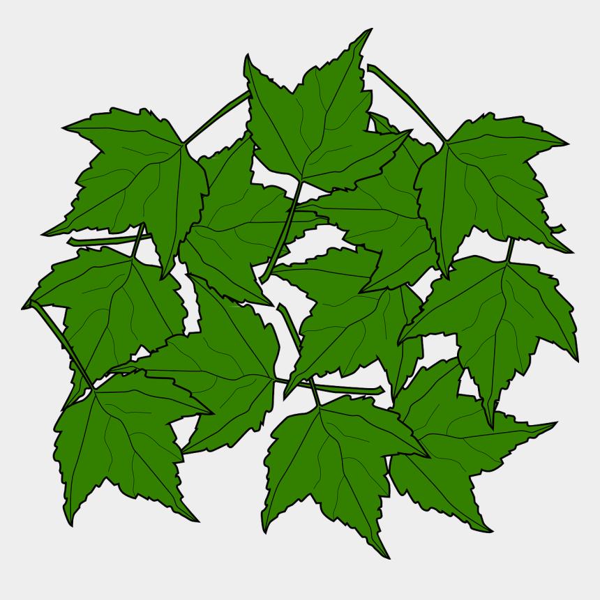 fall leaves clipart, Cartoons - Maple, Fall, Leaves, Nature, Autumn, Foliage, Greenery - Maple