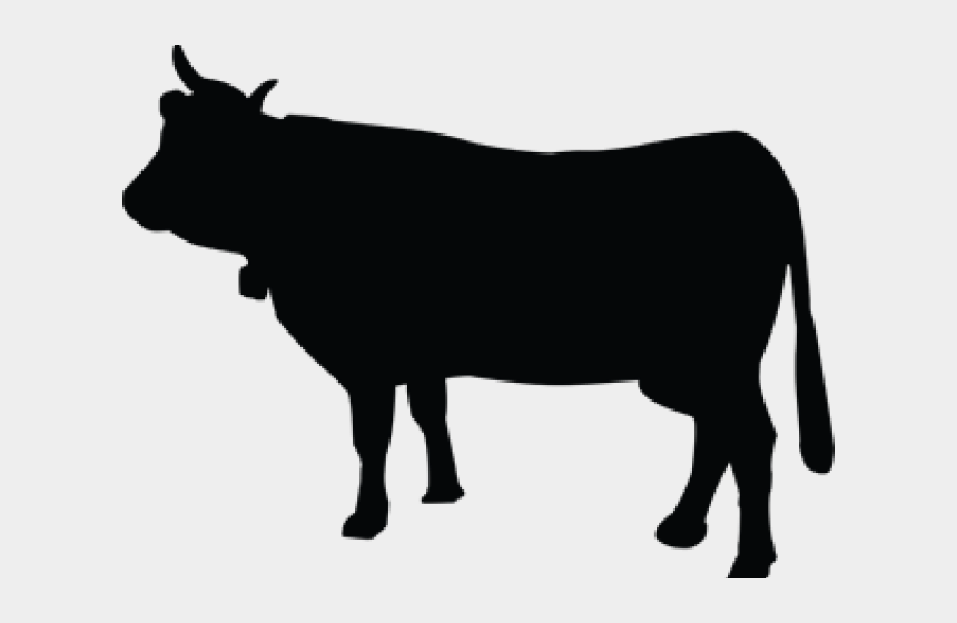 Cattle Clipart Background Cow Silhouette No Background