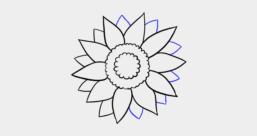 flower clipart black and white, Cartoons - Sunflower Line Drawing