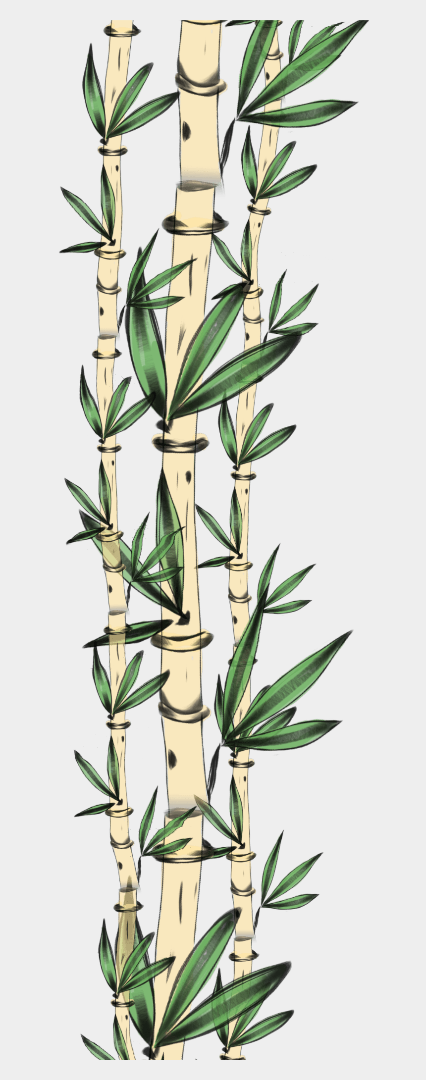bamboo frame clipart, Cartoons - #freetoedit #bamboo #border - รีวิว ผง ขัด ฟัน ฟ ฟาง