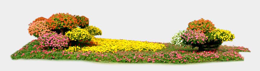 flower bed clipart, Cartoons - Flower Bed Png - Flower Bed Transparent