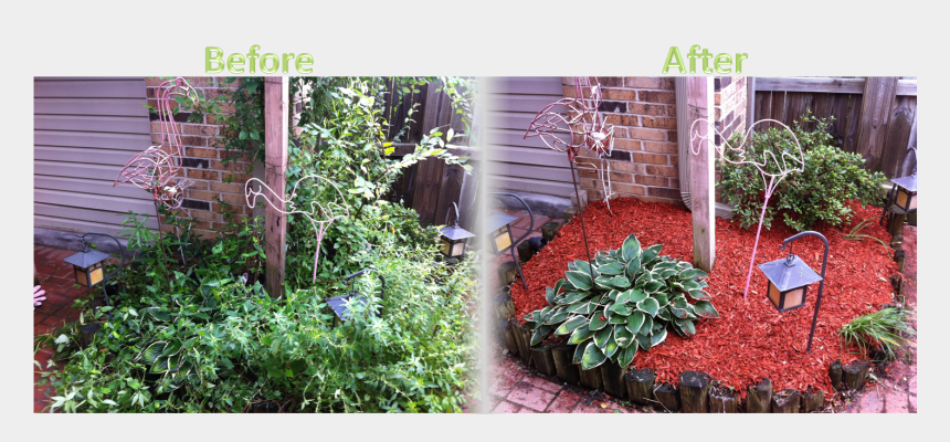 flower bed clipart, Cartoons - Flower Bed Maintenance - Mulch Before And After