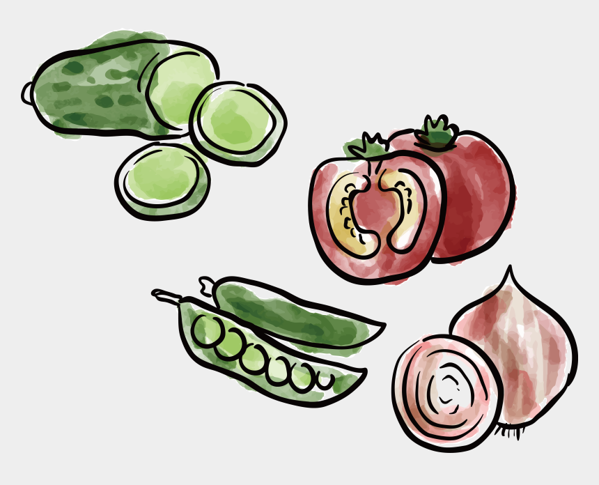food and nutrition clipart, Cartoons - Drawing Vegetables Organic Food - رسم الخضار للاطفال