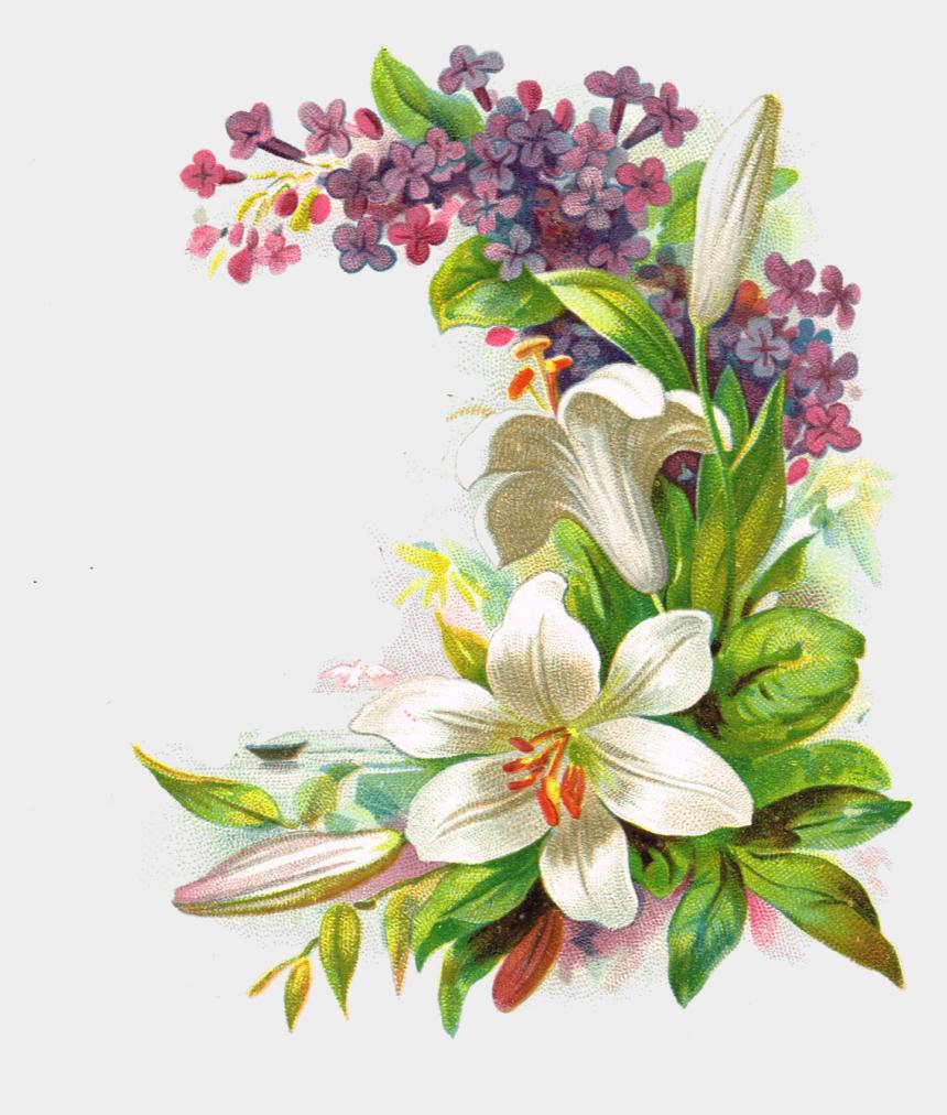 antique flower clipart, Cartoons - Png Flower Vintage