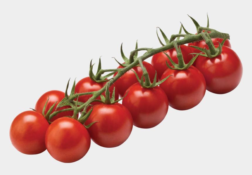 sliced tomato clipart, Cartoons - Tomato Cherry On Vine