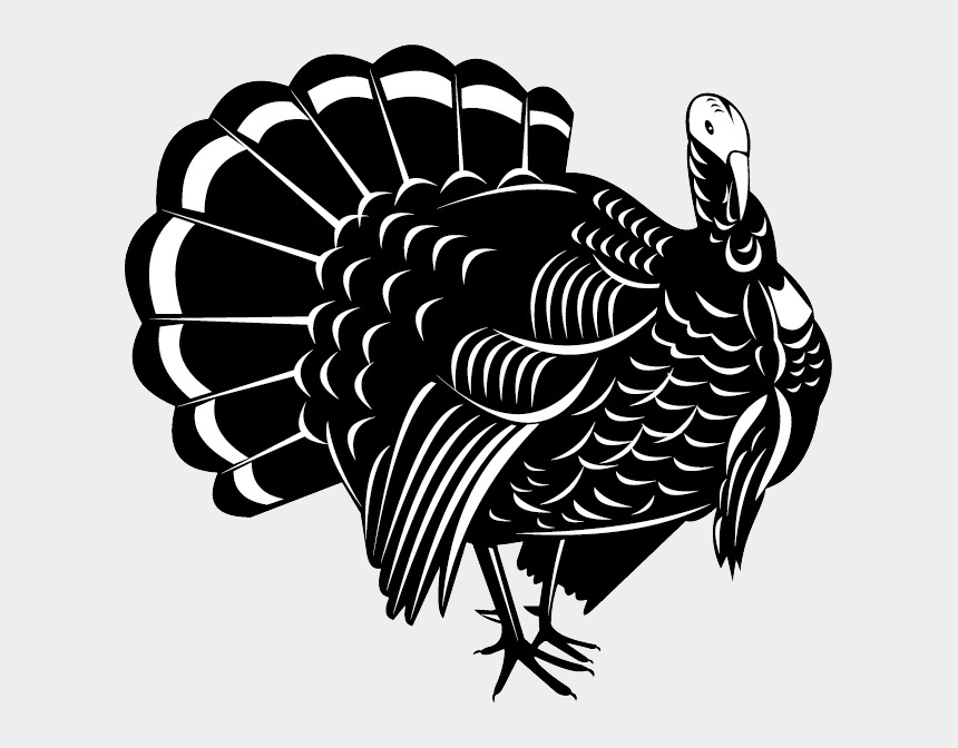 turkey clipart black and white, Cartoons - Turkey Bird Png Image With Transparent Background - Turkey Vector Black And White