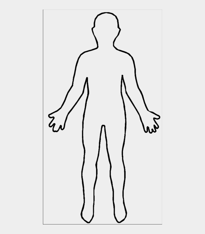 human clipart, Cartoons - Png Human Body Outline - Shape Of Human Body