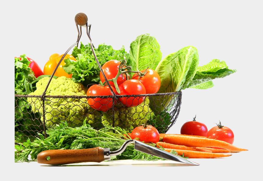 fruits and vegetables clipart, Cartoons - Vegetable Png Image - Transparent Background Vegetables Png
