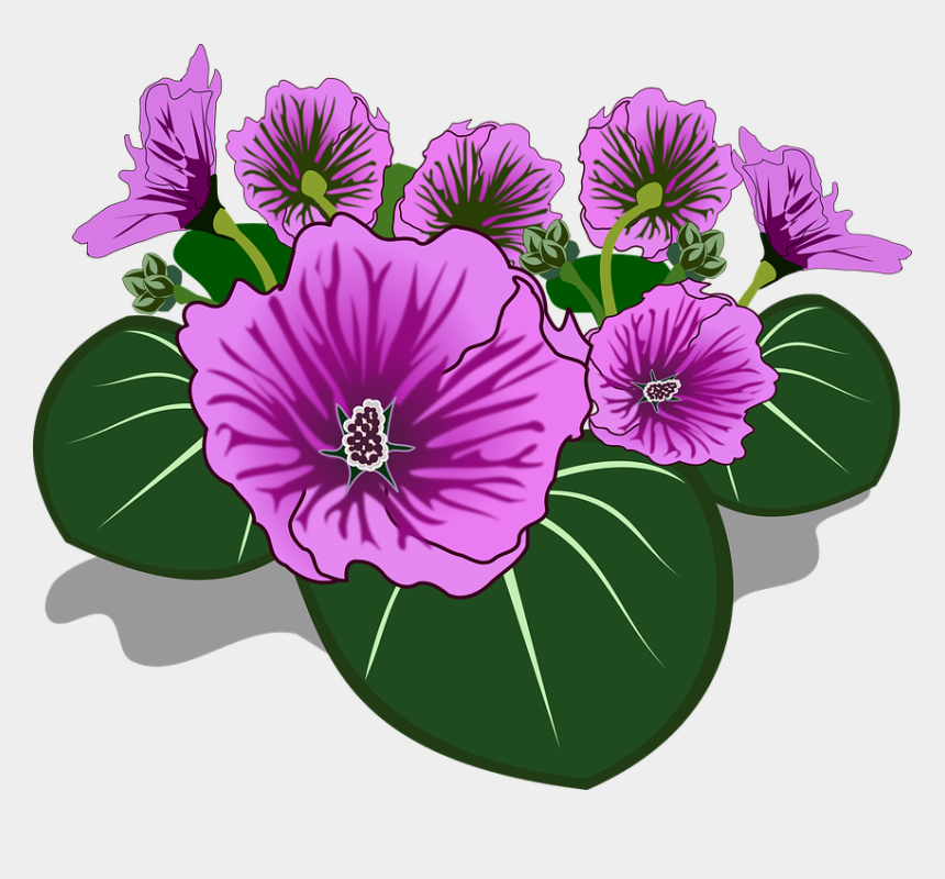 blume clipart, Cartoons - Clipart, Flor, Flora, Blume, Natur, Pflanze - Flowers Drawing With Color