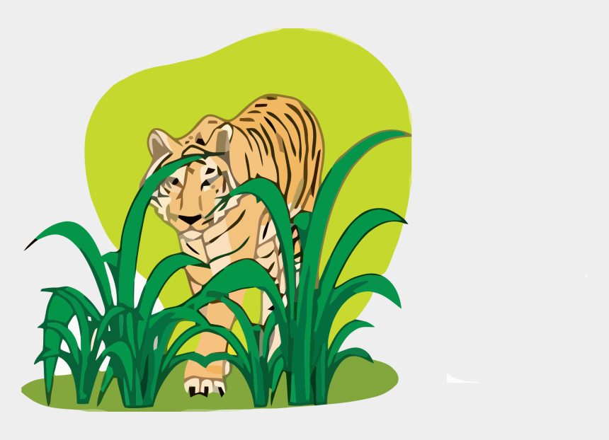 jungle animals clipart, Cartoons - Tiger Clipart Png - Plants And Animals Free Download