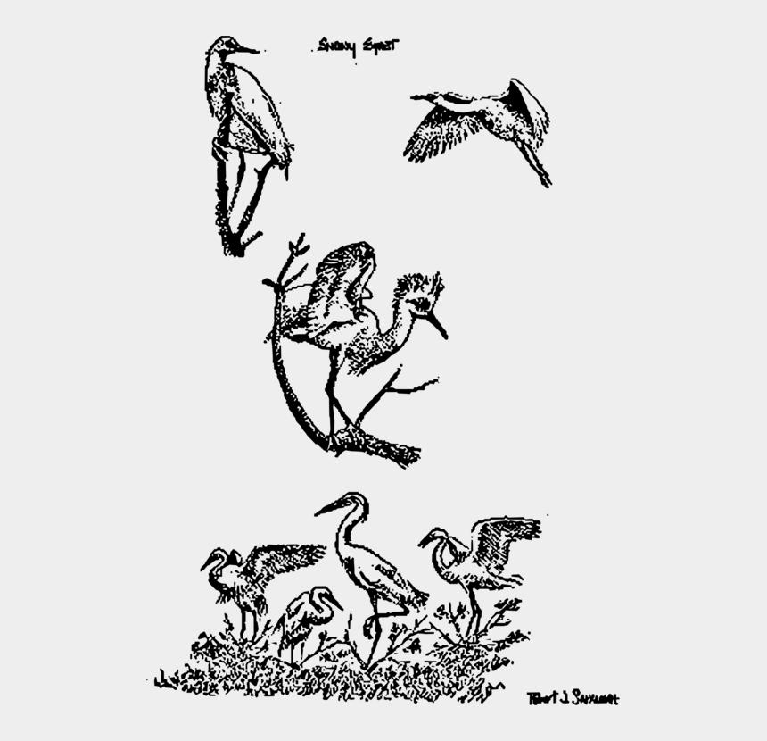 egret clip art, Cartoons - Cartoon