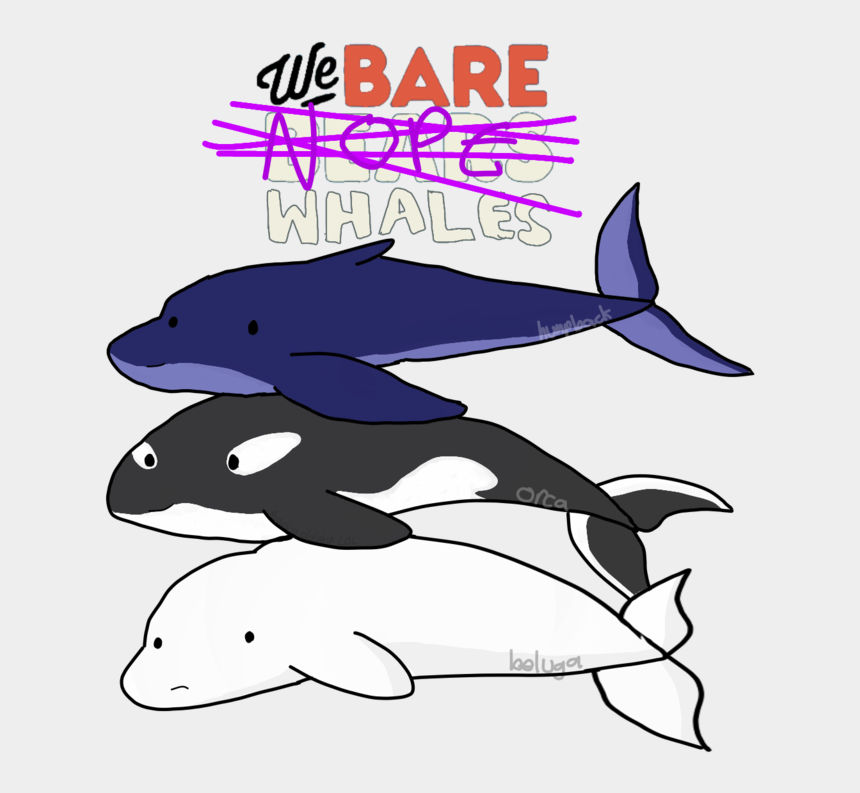 beluga whale clip art, Cartoons - We Bare Bears Orca