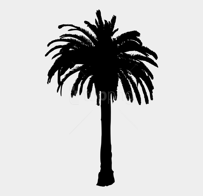 black palm tree clip art, Cartoons - Palm Tree Transparent Background