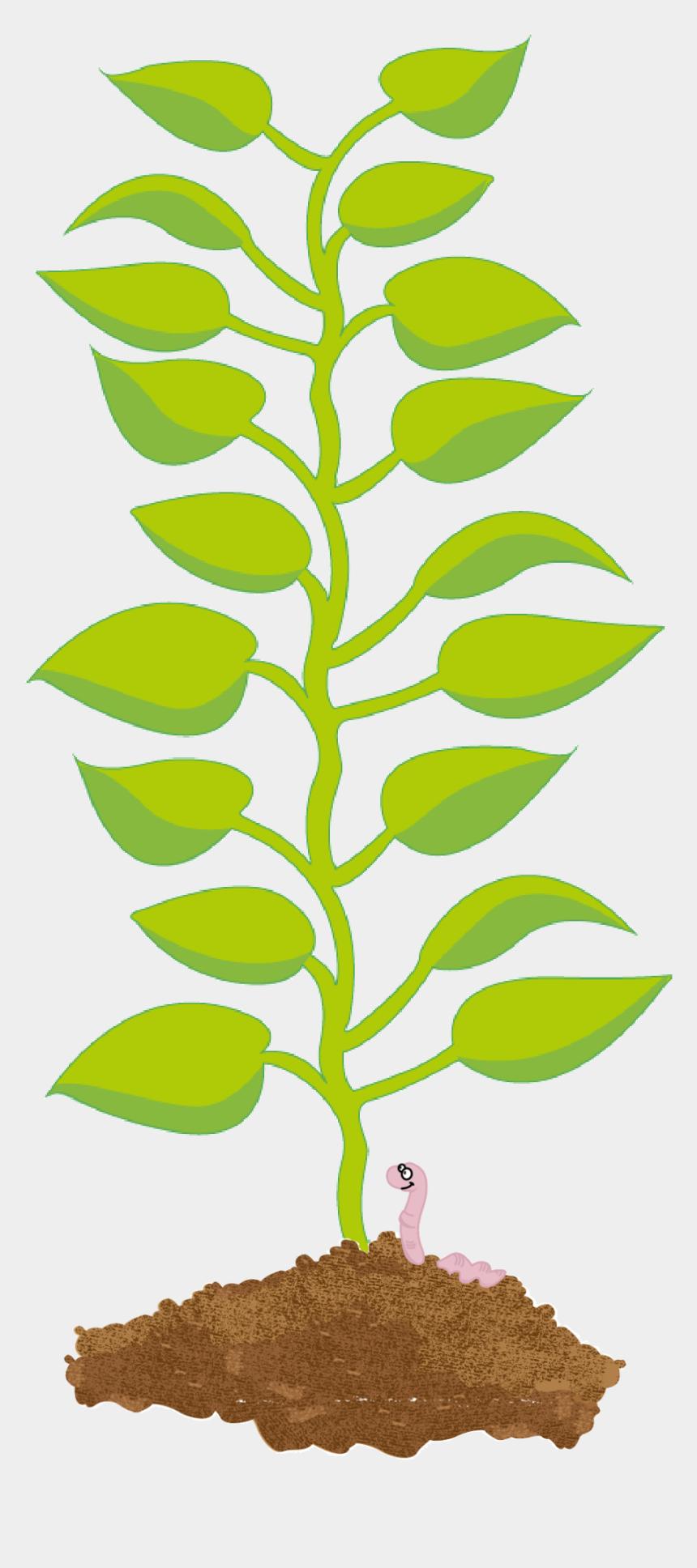 leaf stem clipart, Cartoons - Png Clipart Potato Leaf Png