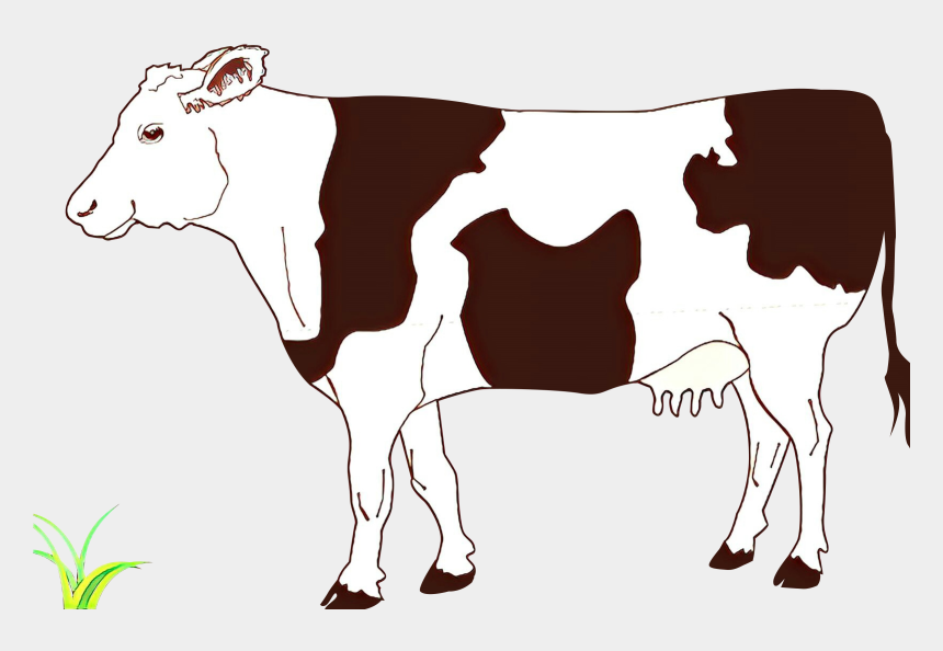 beef cattle clip art, Cartoons - Cow Side View