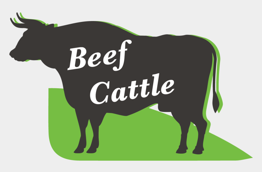 beef cattle clip art, Cartoons - Dairy Cow