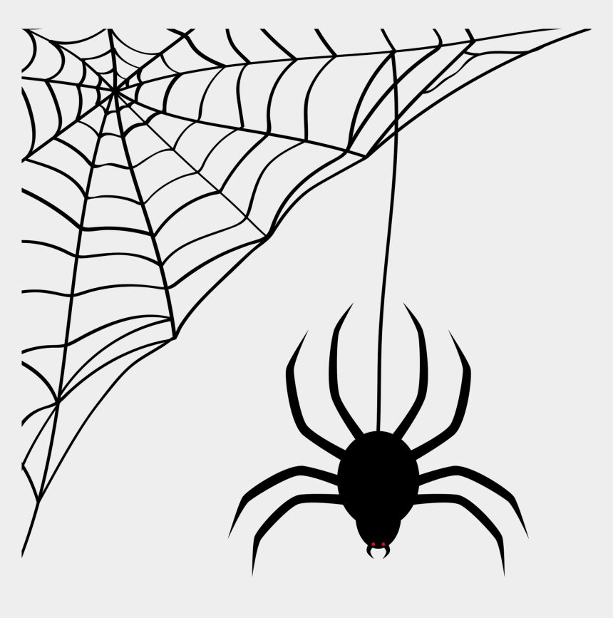 black and white spider clipart, Cartoons - Spider Web Clipart Transparent Background