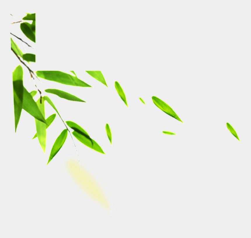bamboo clipart border, Cartoons - Green Leaf Png Hd