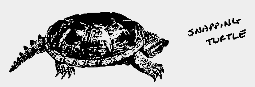 tortoise clipart, Cartoons - Common Snapping Turtle Vertebrate Tortoise Reptile - Snapping Turtle Drawing