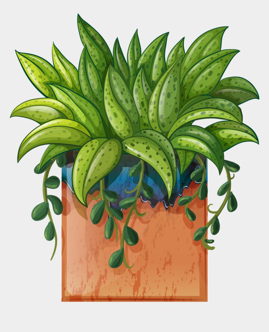 plants clipart, Cartoons - Clip Art Of Beautiful Plants For The Spring Garden - Indoor Plants Clip Art