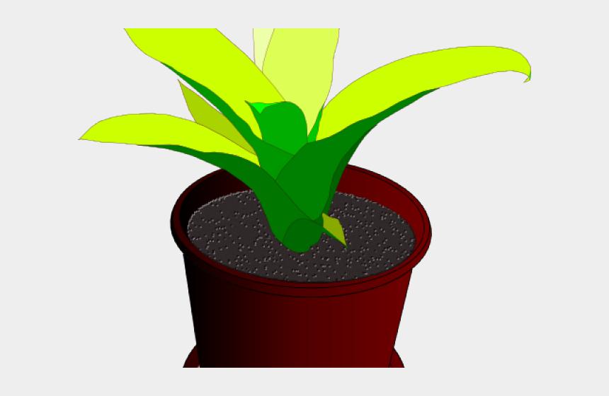 plants clipart, Cartoons - Desenho De Vaso De Plantas