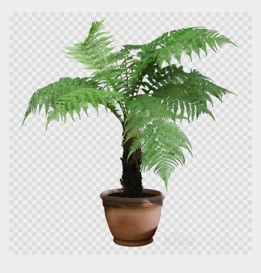 plants clipart, Cartoons - Plants Png Transparent Clipart Houseplant Indoor Plants - Transparent Background Potted Plant Png