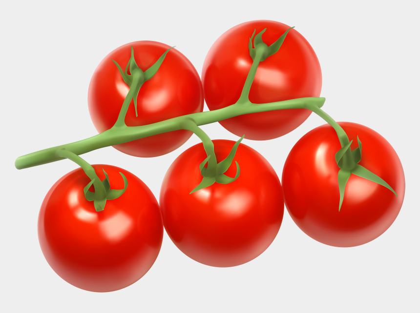 cherry clipart, Cartoons - Tomatoes Branch Png Clipart - Tomatoes Clipart