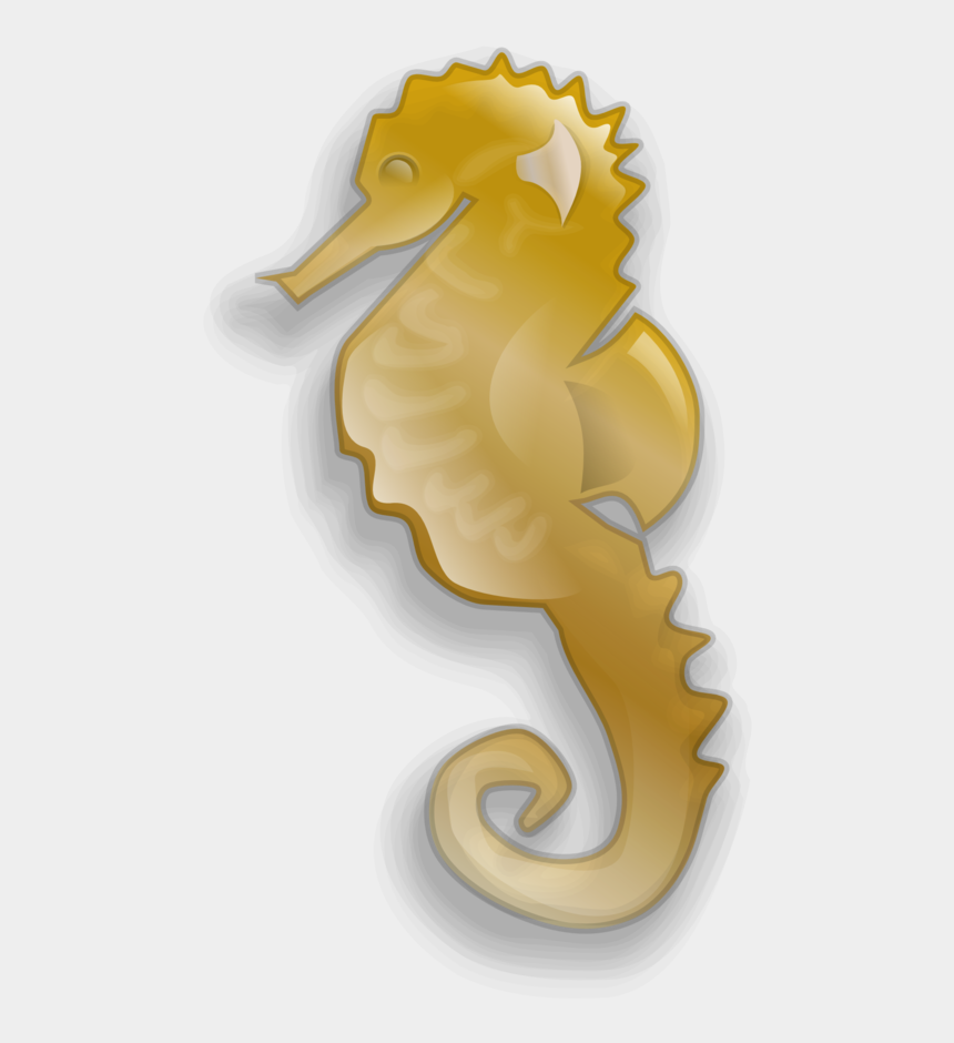 Seahorse Clipart Png
