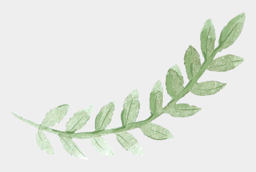watercolor leaves clipart, Cartoons - Watercolor Green Leaf Png