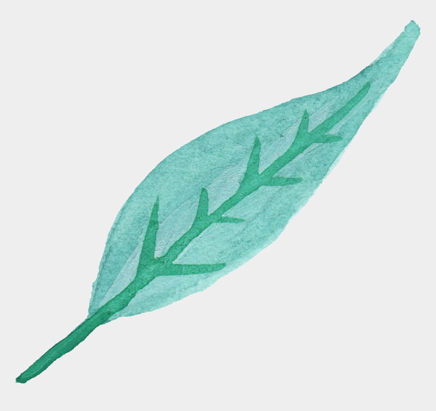 watercolor leaves clipart, Cartoons - Watercolor Leaves Clipart
