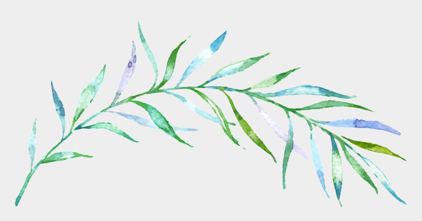 watercolor leaves clipart, Cartoons - Watercolor Transparent Background Branch Png