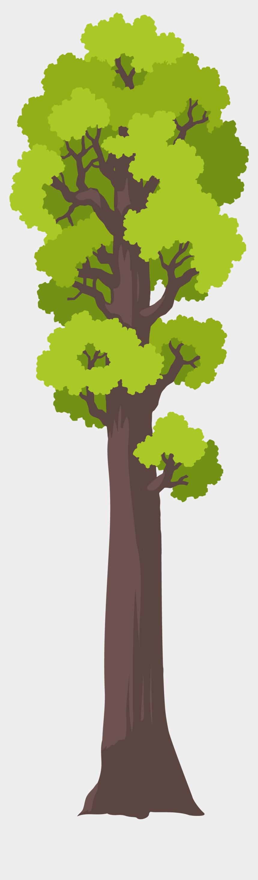 redwood tree clip art, Cartoons - Oak